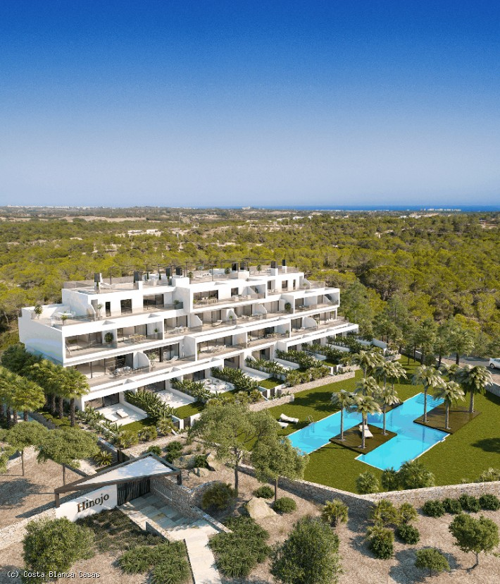 1321, Spanish Property, for sale Campoamor
